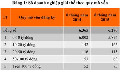 Tháng 08/2015: Doanh nghiệp thành lập mới tăng 41%
