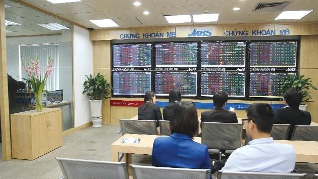 Giai đoạn bùng nổ của thị trường sẽ rơi vào đầu năm 2016