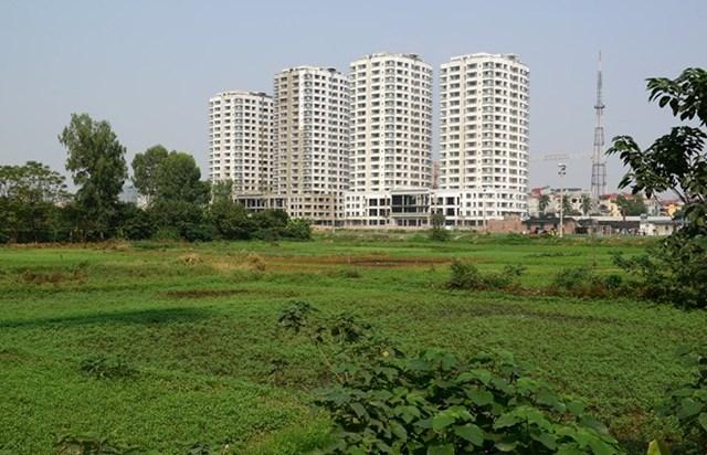 Bộ Tài chính đề xuất mở rộng miễn thuế sử dụng đất nông nghiệp