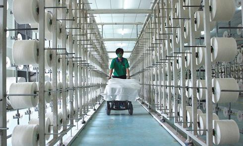 Cổ phiếu dệt may, thủy sản đón sóng TPP