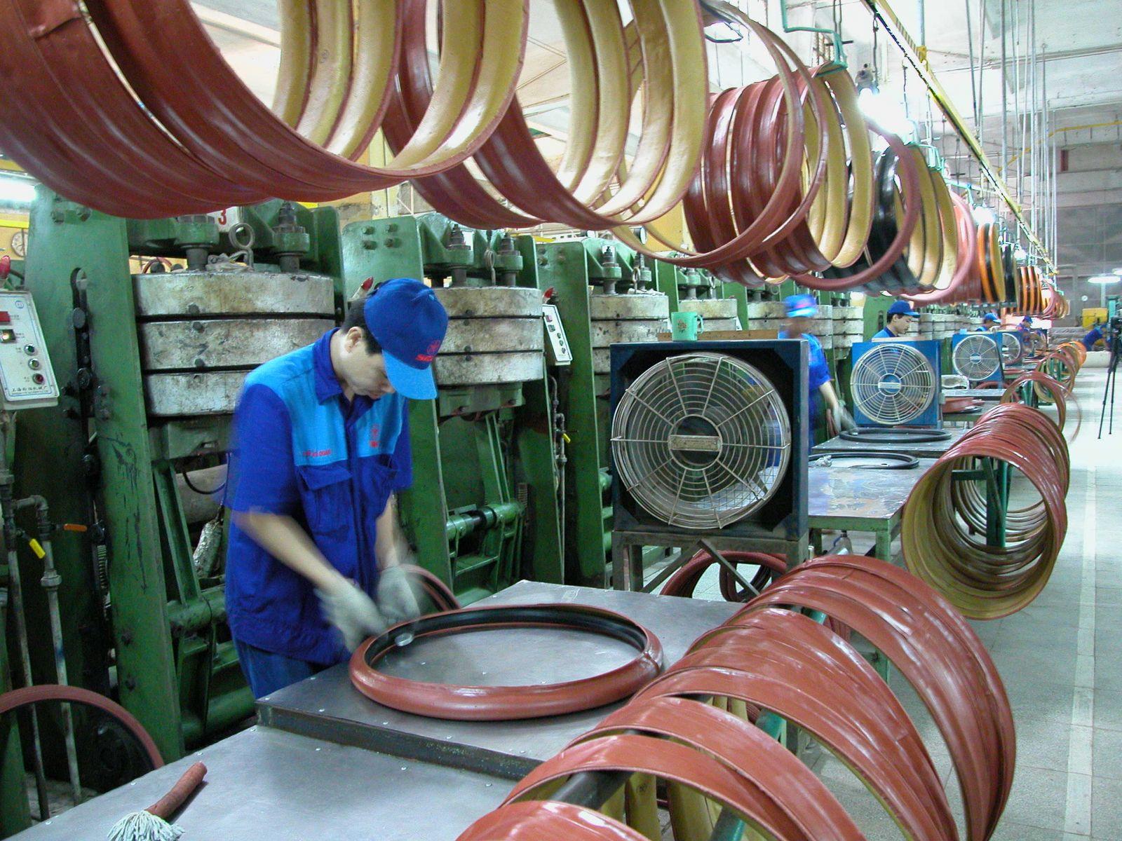 """Trạng thái """"nghẹt rễ"""" của cộng đồng doanh nghiệp Việt Nam"""
