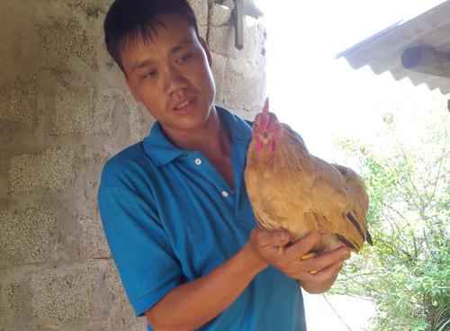 Người Dao nuôi gà 'tiến vua' ở Mẫu Sơn