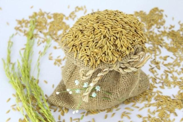 Ảnh hưởng trên thị trường lúa gạo: Biến động tỷ giá lấn át El Nino