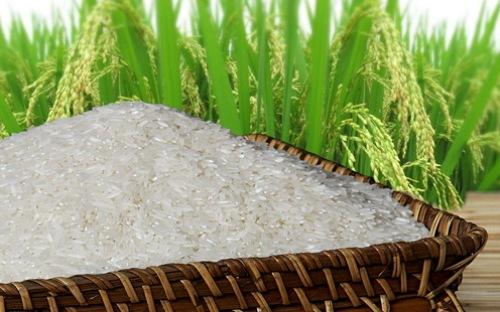 Nhân dân tệ suy yếu có thể tác động đến giá gạo Việt Nam
