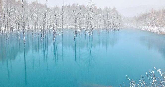 Hồ xanh ở Hokkaido đẹp rợn người