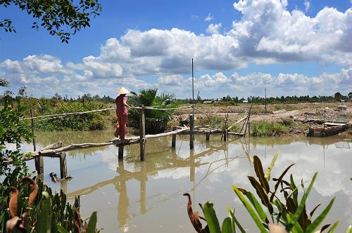 Mênh mang sông nước Tiền Giang