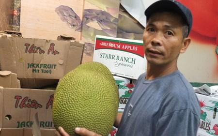 """""""Tổng quản"""" ở China Town lý giải vì sao trái cây Việt lép vế"""