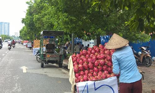 thanh long ruot do - thuong hieu xuat khau cua viet nam ban tai via he voi gia 15.000 dong/kg