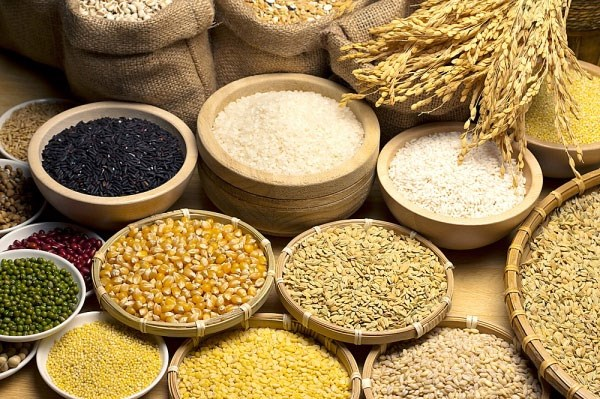 Dự trữ ngũ cốc toàn cầu dự báo cao nhất 30 năm