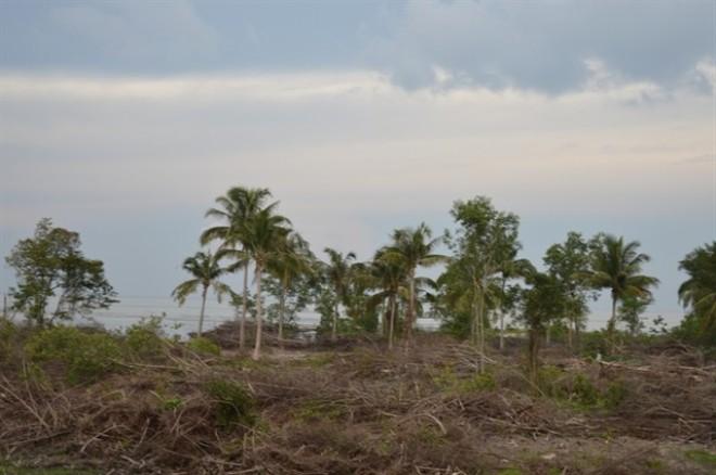 Nóng bỏng đất Phú Quốc: Sốt giá sình sịch