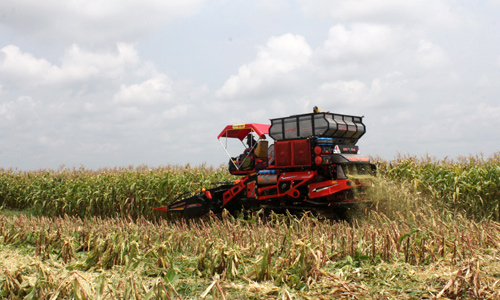 Đầu tư cho nông nghiệp thấp dần đều
