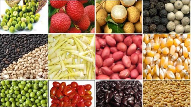 Macquarie: Giá nông sản thế giới sẽ còn tiếp tục giảm