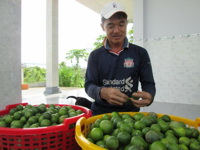 40kg chanh khong bang mot o banh mi - anh: thanh nhon