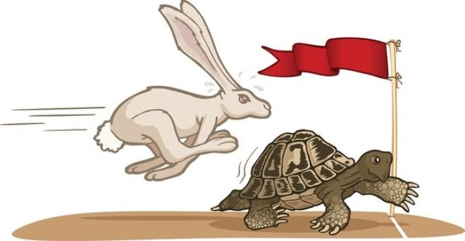 Vào TPP, AEC, Việt Nam nên là rùa hơn là thỏ