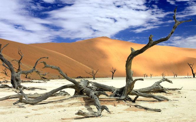 """Khám phá Namib và sa mạc Trắng, """"đặc sản du lịch"""" châu Phi"""