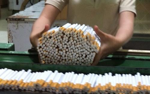 Sản lượng thuốc lá dự kiến giảm 7% trong năm 2016