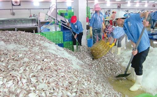 Doanh nghiệp chế biến thủy sản tại Thanh Hóa 'đói' nguyên liệu