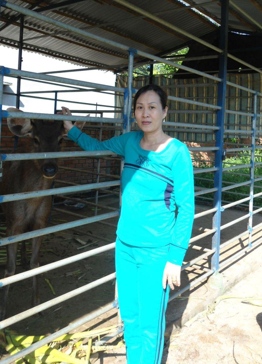 Trại hươu nai Trang với hướng đi mới