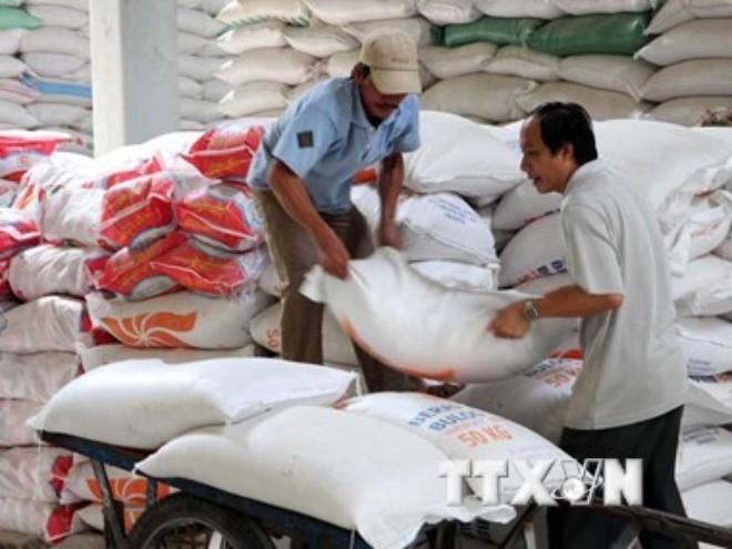 """Giấy phép xuất khẩu """"trói chân"""" ngành sản xuất lúa gạo Việt Nam"""