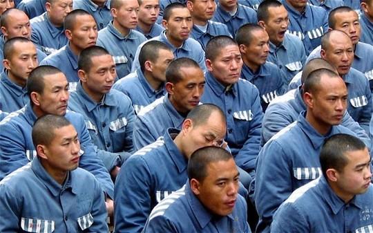 Trung Quốc lấy nội tạng của tù nhân còn sống?