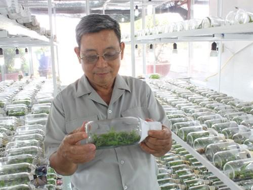 Tỉ phú nông dân Sài Gòn: Làm giàu nhờ lan