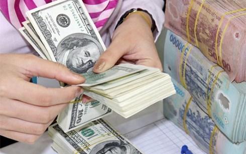 Tiền đồng đã mất giá 5% trong năm nay