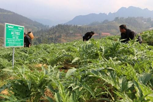 Khẳng định vị thế của sản phẩm thương hiệu Việt