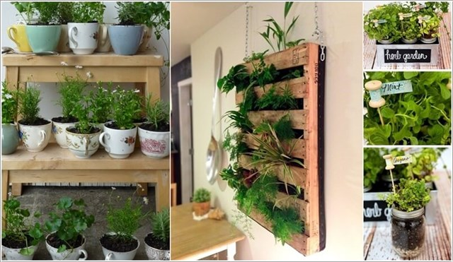Trang trí nội thất bằng những khu vườn tí hon
