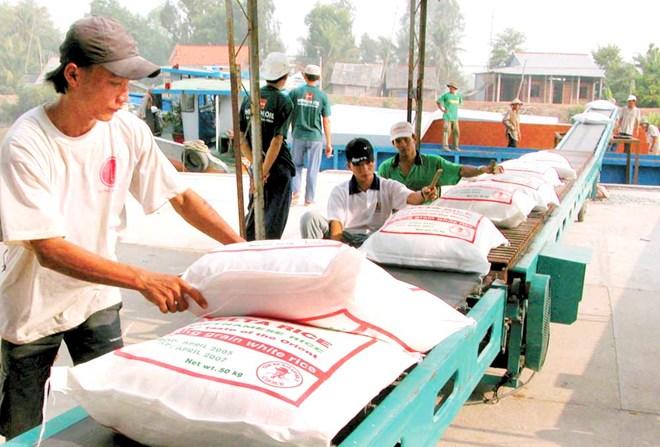Xuất khẩu tiểu ngạch: Nhiều rủi ro