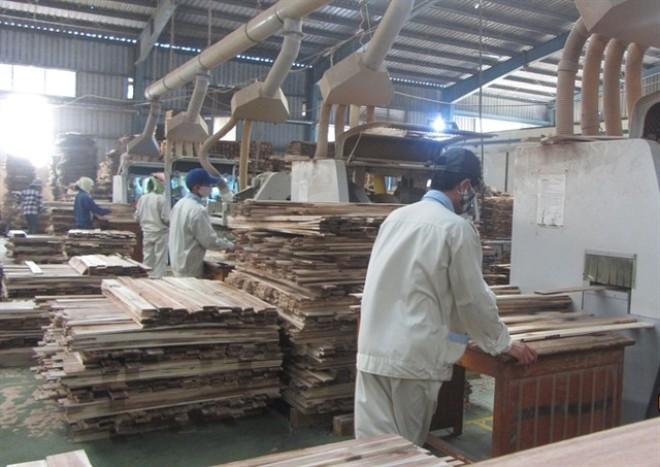 Tin vào xuất khẩu gỗ