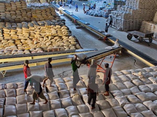 Xuất khẩu gạo tiếp tục giảm mạnh so với cùng kỳ năm 2014