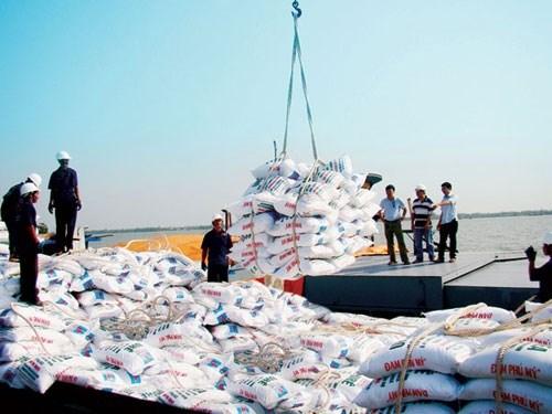 Chi hơn 800 triệu USD nhập khẩu phân bón 7 tháng đầu năm, tăng 18% cùng kỳ